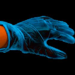 Handschoen Vinyl gepoederd blauw